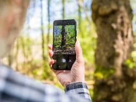 Entdeckungen mit dem Smartphone: Natur-Apps boomen in Corona-Zeit