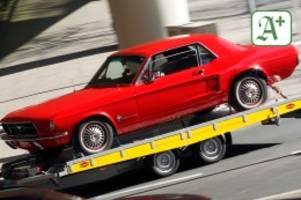 Autoposer in Hamburg: Mustang beschlagnahmt: Wütendes Ehepaar lässt Hosen runter