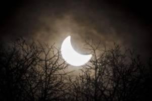 Naturspektakel: Stromnetzbetreiber haben für Sonnenfinsternis vorgesorgt