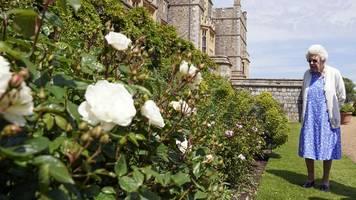 Britische Royals: Queen pflanzt Rose zu Prinz Philips 100. Geburtstag
