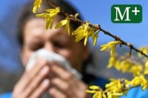 Wissenschaft: Berlin wird Spitzenstandort für Allergieforschung