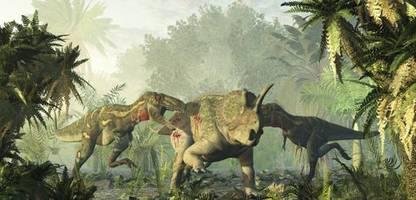 Armin Schmitt erklärt Dinosaurier: »Am Ende war der Tyrannosaurus ein Krüppel«