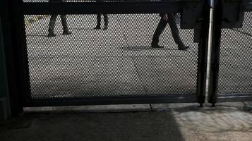 hinweise auf organraub an häftlingen in china