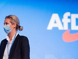 Streit um Weidel-Spende: AfD scheitert mit Klage gegen Bußgeld