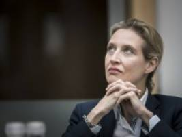 Spendenaffäre: AfD muss hohe Strafe zahlen