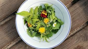 schön,  gut duftend und lecker: die aromen essbarer blüten genießen