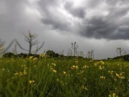 Die Wetterwoche im Schnellcheck: Schauer und Gewitter beenden Hitzewelle