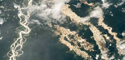 Amazonas-Regenwald: Die zerstörerischen Machenschaften der Gold-Schürfer