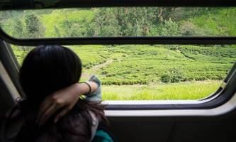 Grüner Pass: 900.000 Zertifikate bereits abgerufen