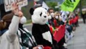 Klimaschutz: Bundestag berät über Verschärfung der Klimaziele