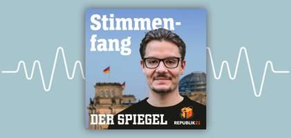 Gehört Fridays for Future auf die Straße – oder in den Bundestag? - Republik-21-Podcast