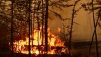 waldbrände: mehrere regionen im norden russlands rufen notstand aus