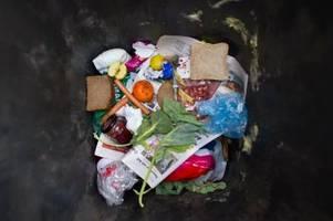 WWF-Studie: Weltweit landen 40 Prozent aller Lebensmittel im Müll