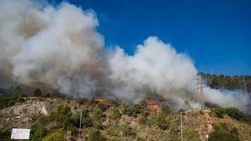 Spanien: Waldbrand westlich von Barcelona außer Kontrolle