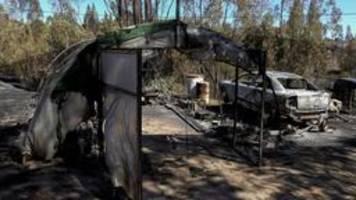 provinz barcelona bedroht: waldbrände wüten in spanien