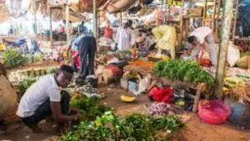 niger: wenn man sich reis nicht leisten kann