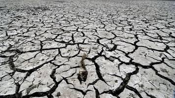 Klimawandel - Klima-Notfall: Wissenschaftler schlagen erneut Alarm