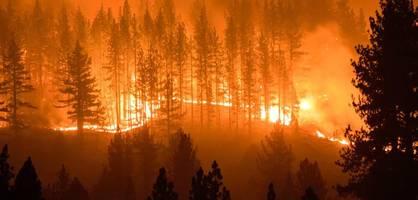 """""""Klima-Notfall"""" – Tausende Wissenschaftler schlagen erneut Alarm"""