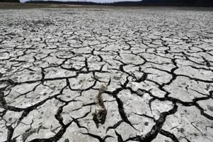 Klima-Notfall: Wissenschaftler schlagen erneut Alarm