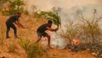 waldbrände in der türkei: zu viele feuer, viel zu schnell