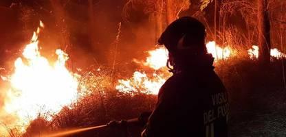 Italien: Hunderte Waldbrandeinsätze auf Sizilien