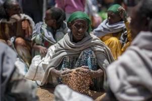 un-organisationen schlagen alarm: tigray droht hungersnot