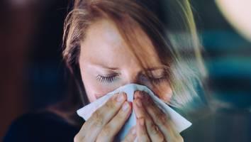 häufiges niesen als neues anzeichen - große covid-studie: so unterscheiden sich symptome von geimpften und ungeimpften