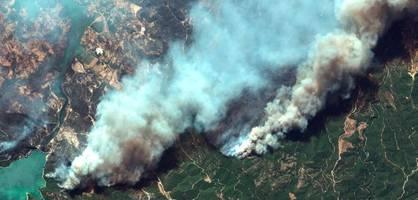waldbrände in der türkei – drei menschen verhaftet