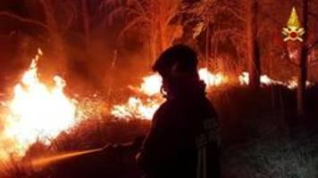 Trockenheit in Italien: Mehr als 100 Brandeinsätze auf Sizilien