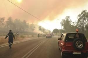 Extremwetter: Hitze und Brände in Griechenland: Mindestens 16 Verletzte