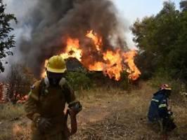Brände ohne Ende: Hitze in Griechenland kennt kein Erbarmen