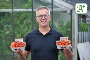 Besonderes Angebot: Frische Erdbeeren aus Kirchwerder auch im Herbst und Winter