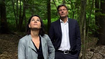 """neues """"sofortprogramm"""" im Überblick - grüne planen neues super-ministerium mit nie dagewesener macht"""