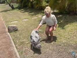Schwein gehabt: Britney Spears von Security aus Bad befreit