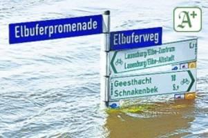 Überflutung: endlich! planer für hochwasserschutz in lauenburg gefunden