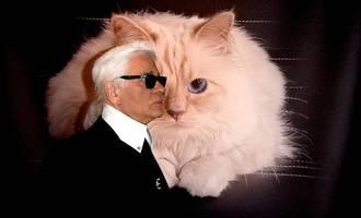 Sotheby's-Auktion: Karl Lagerfelds Nachlass versteigert – Rolls Royce bis Katzennapf