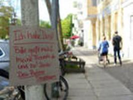 2000 Bäume müssen in Friedrichshain-Kreuzberg gefällt werden