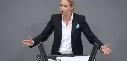 AfD: Verfahren gegen Alice Weidel wegen Auslandsspende eingestellt
