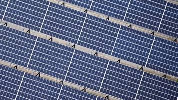 BUND fordert mehr Fläche für Wind- und Solarenergie