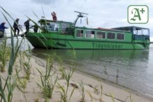 Ausflüge Hamburg: So kommen Sie auf Hamburgs verbotene Inseln