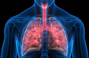 FOCUS-Online-Gesundheitscheck - Wie fit ist Ihre Lunge? Mit drei schnellen Tests zuhause finden Sie es heraus