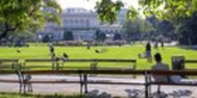 Ab Juli: Wiener Grüne starten neue Konzertschiene