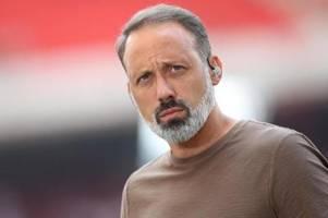 Nach Sieglos-Serie: VfB-Coach Matarazzo fordert Reaktion