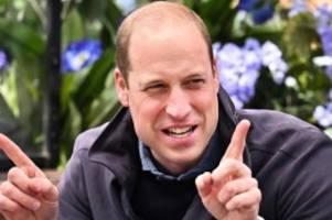 Britische Royals: Prinz William moderiert BBC-Doku zum Umweltschutz
