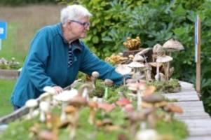 Ausstellungen: Botanischer Garten in Rostock zeigt rund 300 Pilzarten