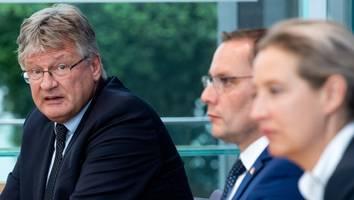 Meuthen gegen Weidel und Chrupalla - Erster Auftritt nach der Wahl: Frost-Stimmung legt Probleme der AfD offen