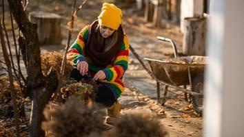 Garten winterfest machen - Diese Handgriffe dürfen Sie nicht vergessen