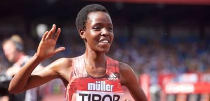 agnes tirop: tote kenianische läuferin - gefährliches zuhause