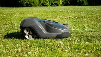 Garten: Darum dürfen Sie Ihren Mähroboter nicht unbeaufsichtigt laufen lassen