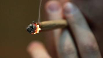 drogenpolitik: 30 prozent der deutschen laut umfrage für cannabis-legalisierung